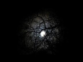 Happy New Year & January Full Moon Link-UpParty