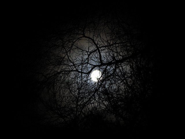January Full Moon Linky Party at The Witch of Howling Creek